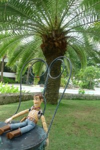 Woody at Cebu