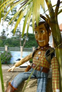 Woody at Tagaytay