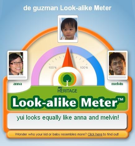 Look-alike meter 2010