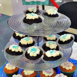 The magical cupcakes with snow frostings
